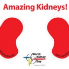 Downloads – Amazing Kidneys Stickers
