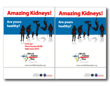 WKD 2013 – Amazing Kidneys Event Poster