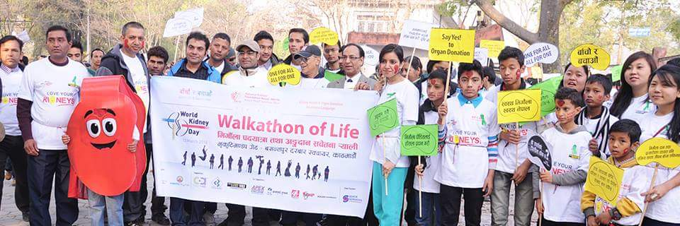 the importance of organ donation to the overall health of society Read chapter 6 promoting and facilitating individual and organ donation is important for the to changes in society on the public health.