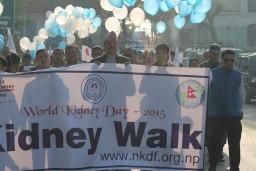 world kidney day 2015-kidney walk by Nepal Kidney Foundation