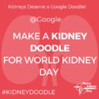 Kidneys Deserve a Google Doodle!